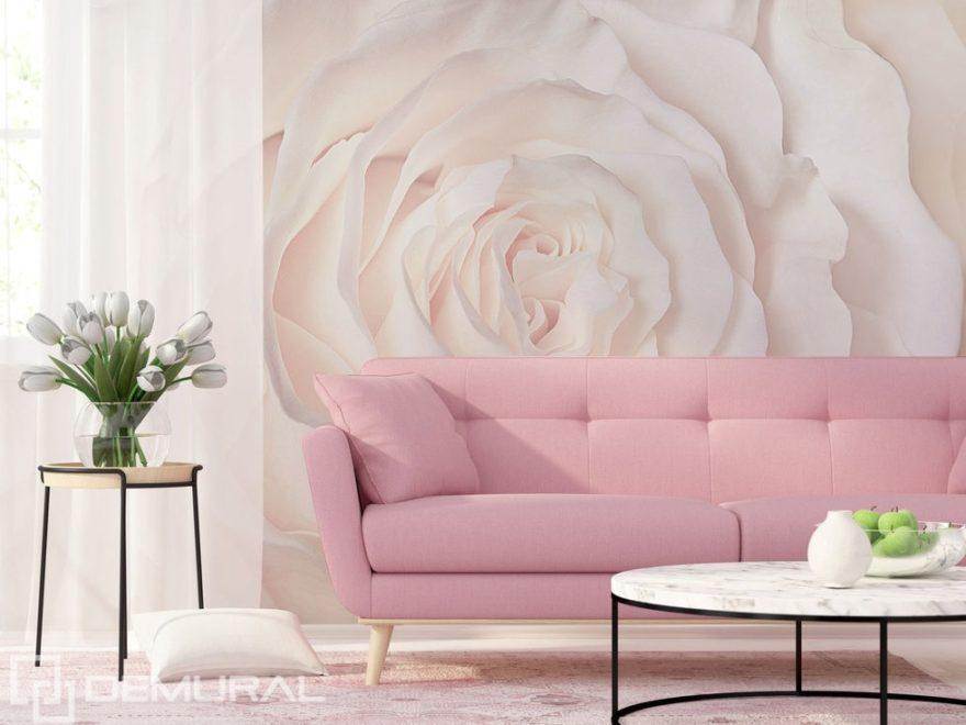 Fototapete - Die Zartheit trägt den Namen der Rose - Pastellfarbene Wände - Demural