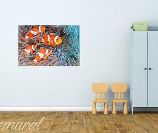 Inspirationen mit bilder seite 2 demural - Bilder fur wand ...