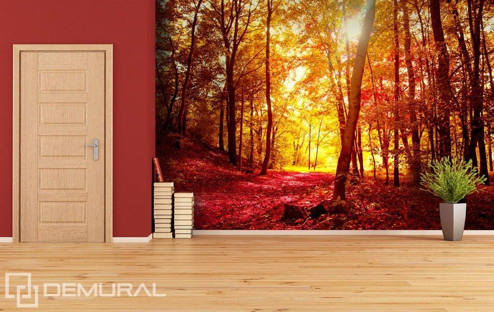 herbstspaziergang im wald fototapeten wald fototapeten. Black Bedroom Furniture Sets. Home Design Ideas