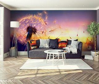 fototapeten pusteblume demural. Black Bedroom Furniture Sets. Home Design Ideas